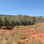 Carbon storage proposed for Indigenous land